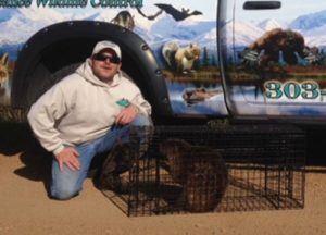 Man sitting next to a cage with beaver inside