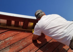 Wildlife contractor sealing up an attic in Richardson