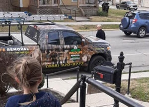 Wildlife removal truck parked in front of house
