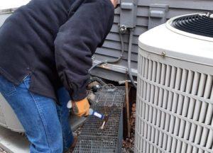 Man setting up a skunk trap near Columbus homes