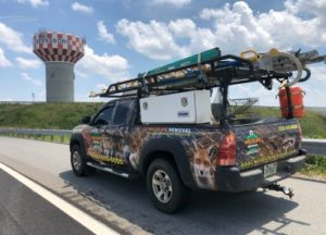 Greensboro Wildlife Removal truck