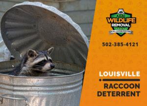 Louisville raccoon deterrent
