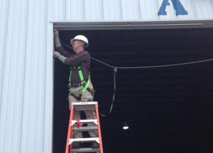 Man on a ladder installing a bird netting