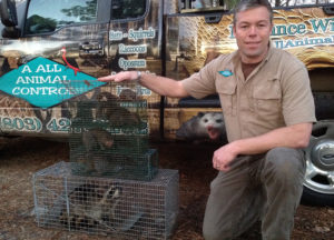 Owner holding a cage with trapped raccoon and squirrel