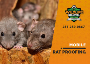 rat proofing in mobile