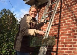 Megan getting a squirrel from a customer's roof
