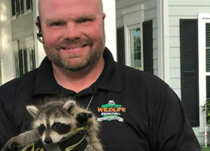 A man holding a young raccoon