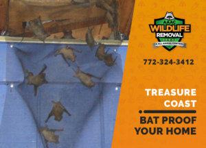 bat proofing my treasure coast home