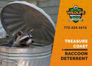 treasure coast raccoon deterrents