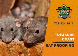 rat proofing in treasure coast