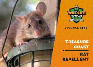 rat repellent useful treasure coast