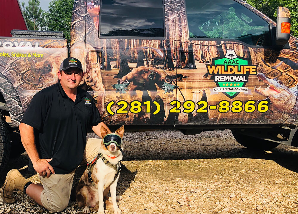 Owner & Brian Moss posing in front of his work truck with trusty canine friend.