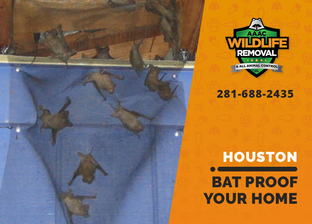 bat proofing my houston home
