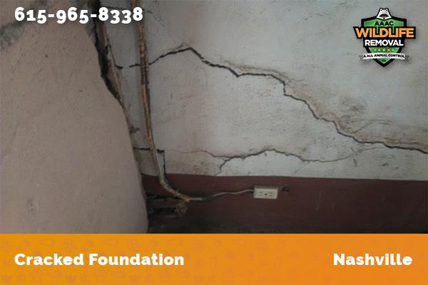 Cracked foundation in Nashville