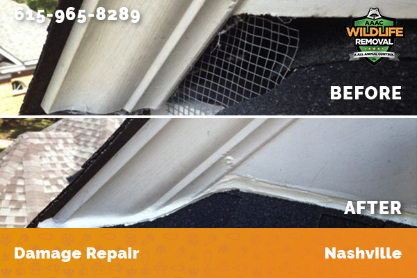 Before and after photos of a roof repair job in Nashville